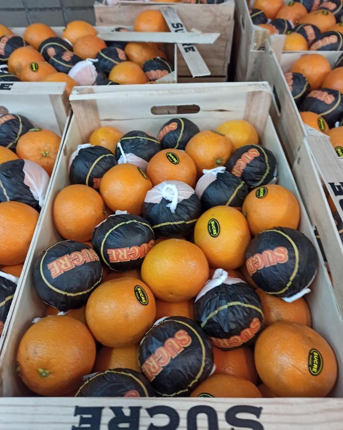 orange à jus Maroc 3 KILOS 5€