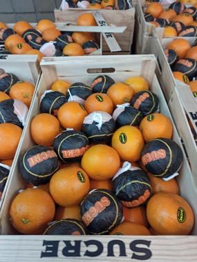 orange à jus salutiana  3kg 5€