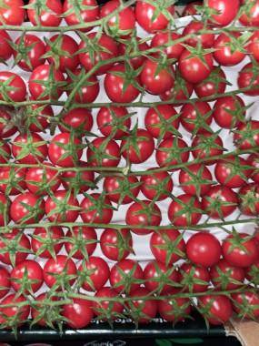 tomate cerise grappe promo le colis de 3kilos