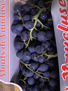raisin noir France muscat aoc