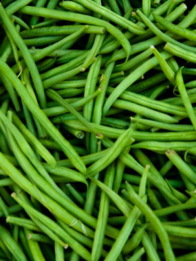 haricot vert france